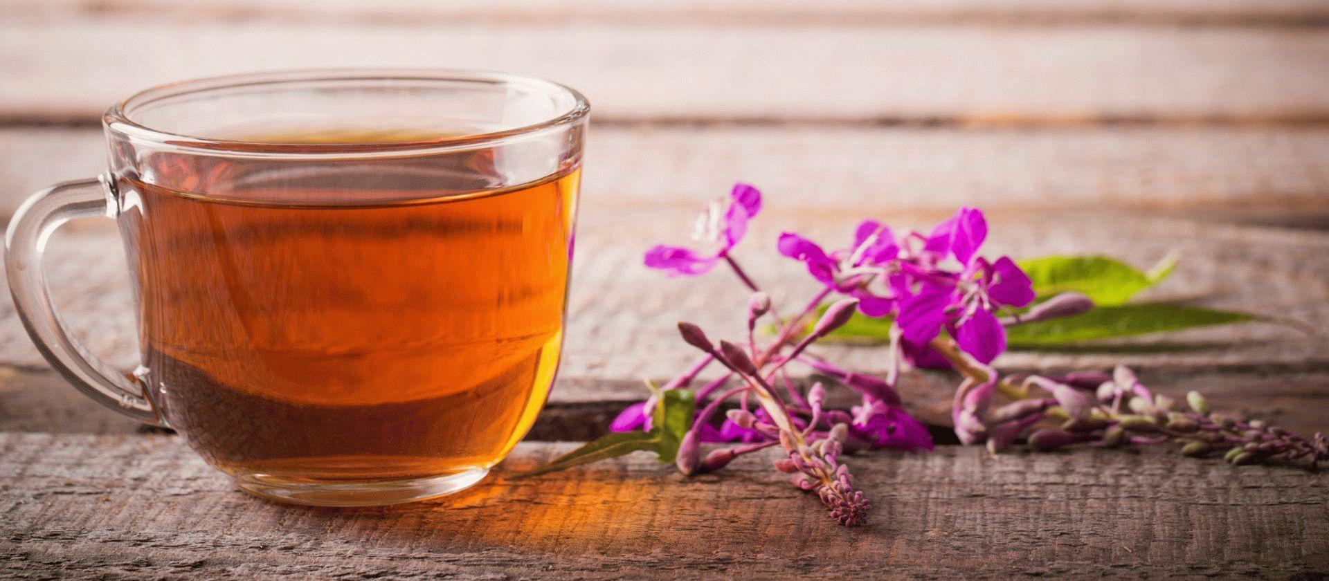 Ферментация иван-чая в домашних условиях 31